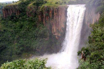 Howick Falls in KwaZulu-Natal is 95m meters tall.